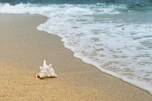 Découvrez un camping de rêve au bord de la mer